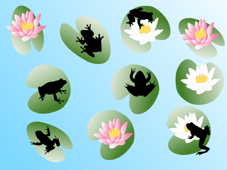 frogs on flowers - vector Vector