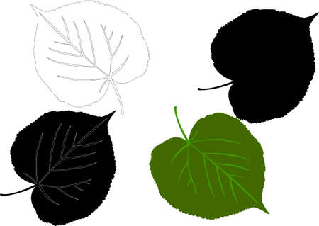 leaf silhouette - vector Vector