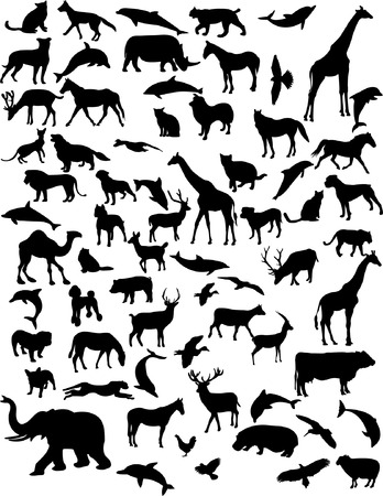 collection of 68 animals  Vector