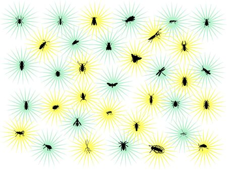 stars with bugs - vector Vector