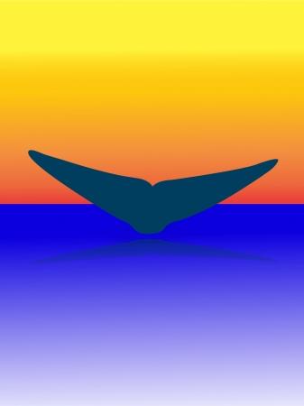 fluke: whales tail on sunset - vector