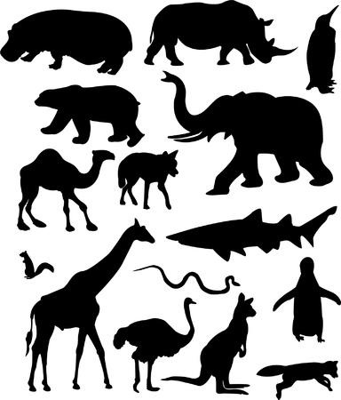 silueta mono: animales salvajes - vector