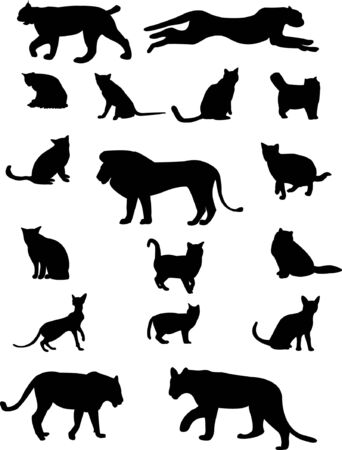 cat family - vector Stock Vector - 9721192