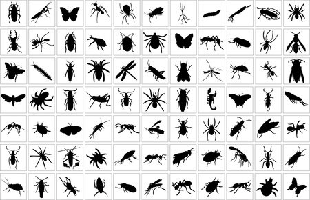 Collection of bugs  Stock Vector - 10254610