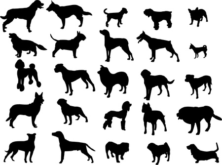 collection of dogs Illustration