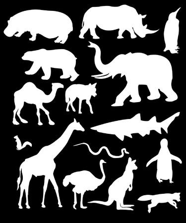 large group of animals: Colecci�n de silueta de animales salvajes