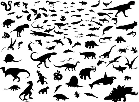 collection of mix animals Stock Vector - 10254613