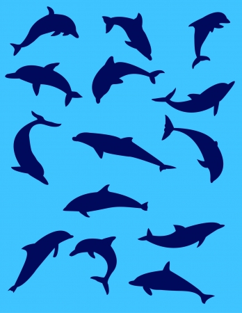 dolphins with blue background  Vector