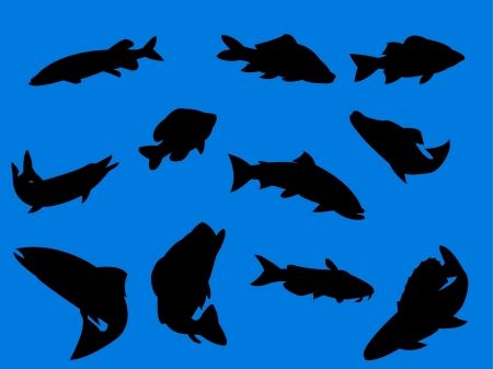Fish on blue background - vector Vector