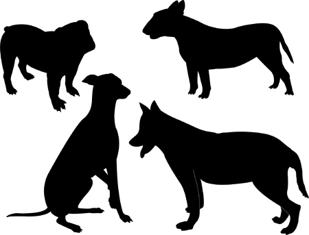 dog standing: Collection of dogs silhouette - vector