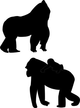 primate: Gorillas silhouette - vector