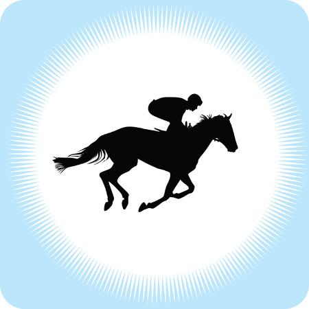 uomo a cavallo: cavallo