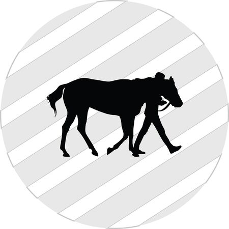 gallop: horse