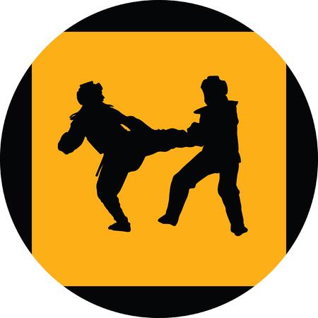 sidekick: taekwondo woman