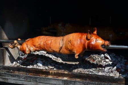 grilled pig. roasted pig
