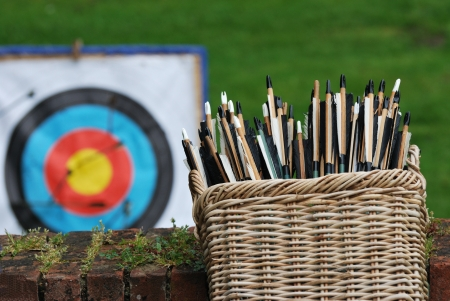 basket of arrows with target photo