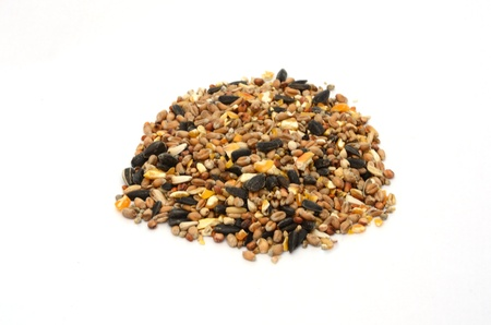pile of bird seed on white background 免版税图像
