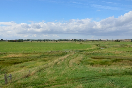 Essex farm landscape Stock Photo - 14924951