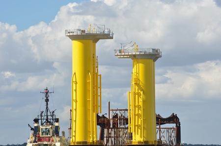sea jack Stock Photo