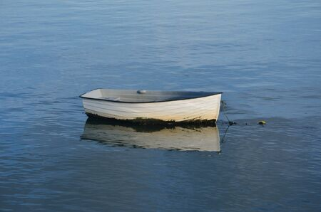 Solitary white Boat photo