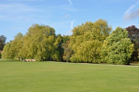 イギリスの田舎の秋