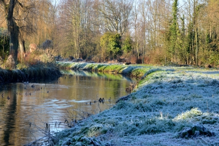 frosty english river scene Stock Photo - 16847619