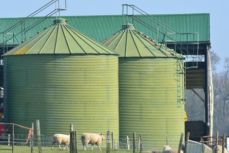 Green food storage silo Stock Photo - 18299011