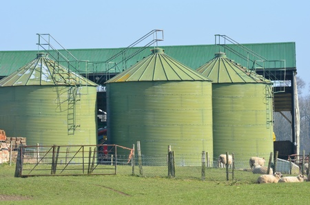 Metal green farm  silos Stock Photo - 18280209