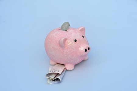 Piggy bank with coin and notes Stock Photo - 22126631