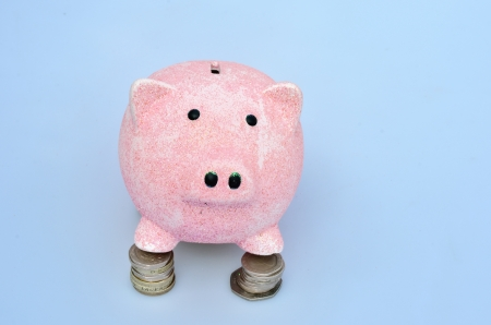 Piggy Bank standing on coins photo