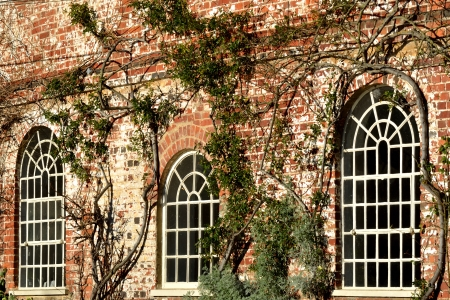 arched white windows photo