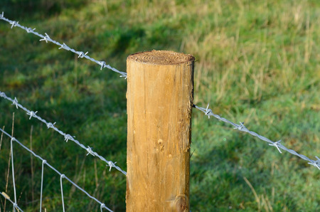 fencing wire: Barbed wire fence at angle Stock Photo