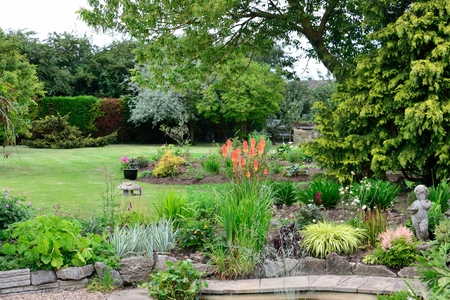 English Garden with plants