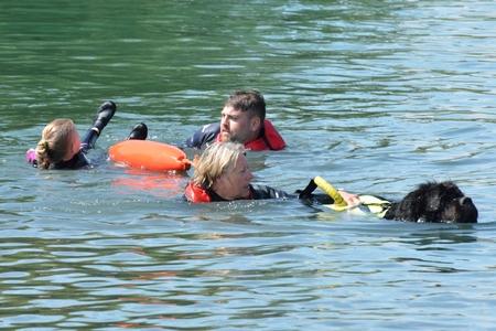 blackwater: Blackwater Country Fare MALDON ESSEX UK 22 June 2014:  Newfoundland Dog in Mock Rescue