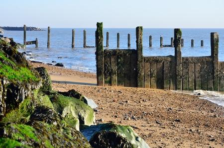 groyne: Wooden groyne on Essex Coast