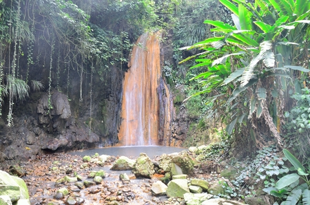 st lucia: Tropical waterfall in forest