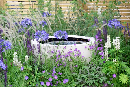 water feature: Water feature amongst purple flowers