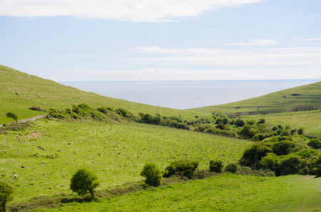 View of sea over Dorset Downs