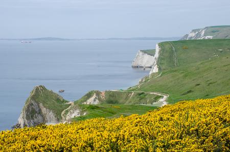durdle door: Dorset Coast on route to Durdle Door