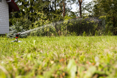 Water sprinkler in action, watering the lawn Stock Photo