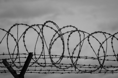 Barbed wire - restricted area. Black and white photo Stock Photo