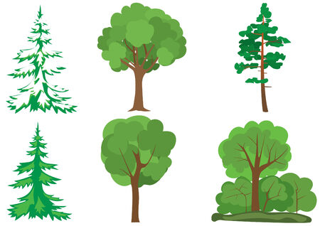 winterly: set of  green trees Illustration