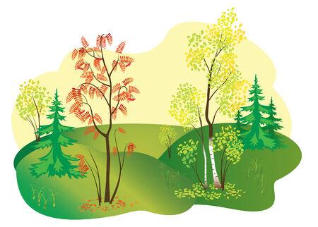 illustration of autumn nature Stock Vector - 7949089