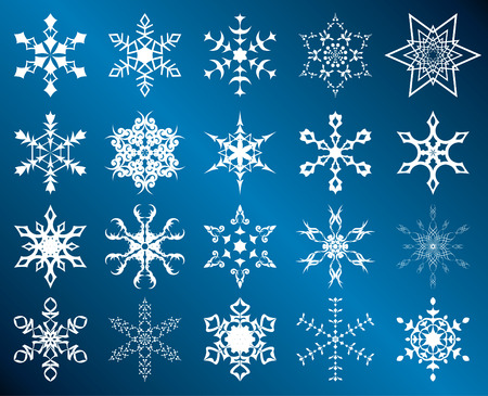 set of white snowflakes Vector