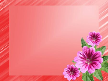 red frame with flowers hollyhock Stock Photo - 8506758