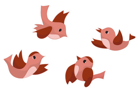 tollas: Vector set of four birds