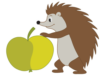 urchin: Vector illustration of  hedgehog with Apple