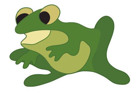 anuran: vector illustration of green frog Illustration