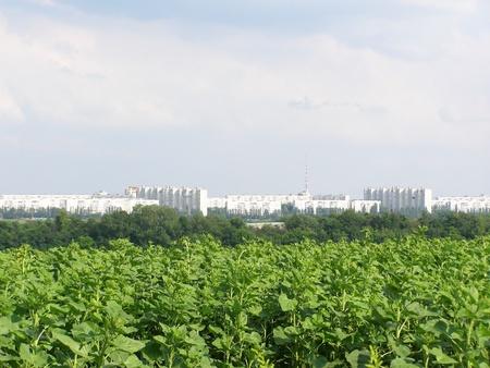 kharkov: view of city Kharkiv and green field Stock Photo
