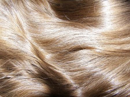 women's beautiful hair Stock Photo - 9050110